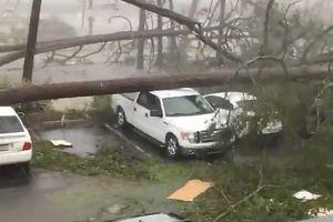 Mỹ: Cận cảnh 'bão khủng khiếp nhất 100 năm' càn quét bang Florida