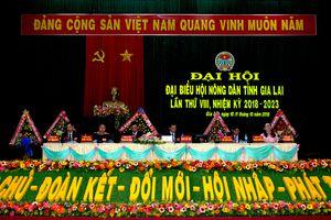 Khai mạc Đại hội đại biểu Hội Nông dân tỉnh Gia Lai lần thứ VIII