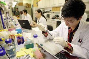 Đột phá trong công bố bài báo khoa học quốc tế của ĐH Việt Nam