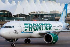 Chuyến bay bị hoãn do hành khách mang 'động vật hỗ trợ cảm xúc'