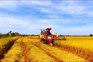 Doanh nhân và ngành Nông nghiệp Việt Nam