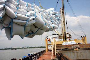 Dự báo năm 2018: Xuất khẩu gạo có thể đạt 3,3 tỷ USD