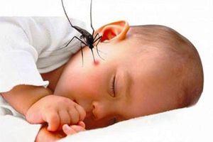 Trẻ bị sốt xuất huyết nên ăn gì đế tránh các biến chứng nguy hiểm?