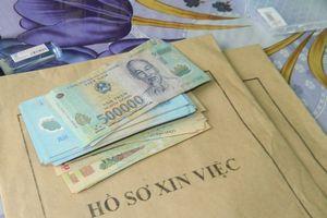 Đắk Lắk: Truy tố nhóm đối tượng lừa 'chạy việc', chiếm đoạt hơn 15 tỷ đồng
