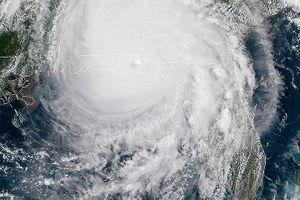Từ Florida tới Georgia, bão Michael suy yếu thành bão nhiệt đới