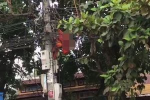 Công nhân chết treo trên cột điện: 'Chưa thể khẳng định là do điện giật'