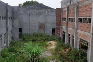 Hải Phòng: Xót xa nhà văn hóa 12 tỷ bị bỏ hoang