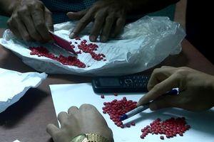 Bắt đối tượng vận chuyển 431 viên ma túy từ Lào về Việt Nam