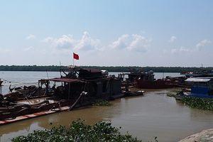 Cuộc chiến 'ngao - cát' chưa có hồi kết nơi cửa biển Hải Phòng