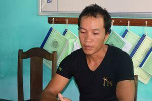 Thừa Thiên Huế: Khởi tố kẻ 'lùa' đàn trâu của người khác đi bán