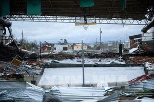 Ít nhất 6 người thiệt mạng do bão Michael