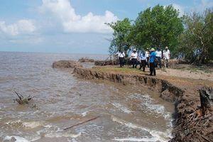 Cà Mau: Khắc phục sạt lở bờ biển do biến đổi khí hậu