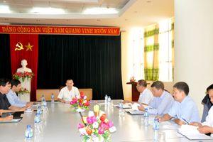 Triển khai kế hoạch tổ chức giải quần vợt các câu lạc bộ tỉnh Ninh Bình lần thứ XII