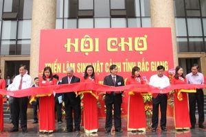 Bắc Giang: Hơn 100 nghệ nhân tham gia Triển lãm Sinh vật cảnh lần thứ XIII