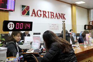 Agribank: Điểm tựa cho ngư dân 'hồi sinh' sau sự cố môi trường biển
