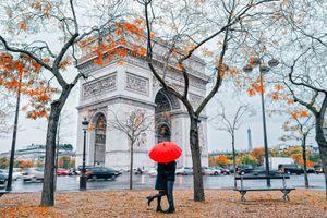 Lặng yên ngắm mùa thu về trên nước Pháp