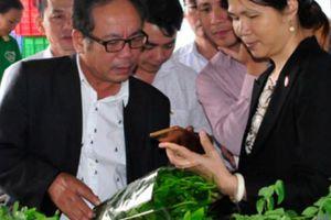 Xây dựng thương hiệu nông sản sạch: Chờ DN 'bắt tay' nông dân
