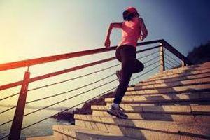 Leo 80 tầng cầu thang bộ giảm cân có hại xương khớp?