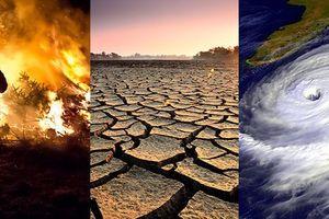 Báo cáo chấn động của Liên Hiệp Quốc mang tên '1,5 độ C': Chỉ còn 12 năm để cứu Trái Đất