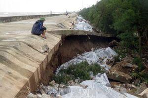 Công tác hộ đê, phòng lụt là trách nhiệm của các cấp, địa phương và người dân