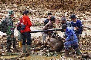 Lũ quét và lở đất ở Indonesia làm 22 người chết 15 người mất tích