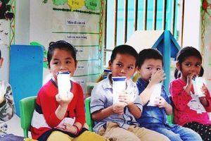 Hà Nội chốt 3 đơn vị tham gia đấu thầu chương trình sữa học đường