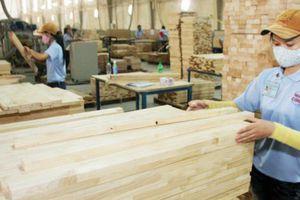 Doanh nghiệp ngành gỗ bàn cách tối ưu lợi thế