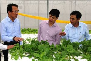 Nghi Xuân có nhiều thế mạnh trở thành huyện NTM đầu tiên của Hà Tĩnh