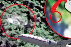 Sốc: Đã tìm thấy đuôi máy bay MH370 trong rừng Campuchia?