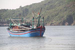 Kịp thời cứu 7 ngư dân trên tàu bị phá nước sắp chìm