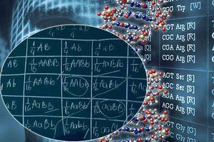 Không ai nghĩ môn Sinh khó đến thế cho đến khi nhìn lại loạt công thức tính toán di truyền gen kinh điển này