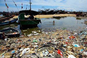 Nhựa tự phân hủy, giải pháp tuyệt vời cho các đại dương