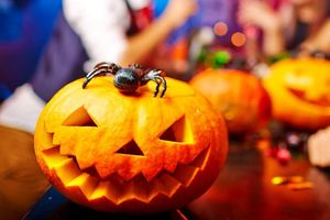 Quả bí ngô rỗng khắc hình khuôn mặt trong lễ Halloween có tên là gì?