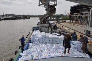 Mỗi tháng, Việt Nam nhập khẩu gần 169 triệu USD phân bón, thuốc trừ sâu