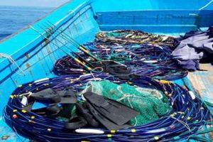 Mang súng điện tận diệt cá tôm ở khu vực bảo tồn biển