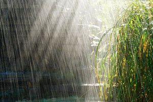 Thời tiết 15/10: Bắc Bộ có mưa rào và dông vài nơi