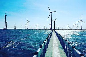 Cánh đồng điện gió đẹp như trời Âu ở Bạc Liêu