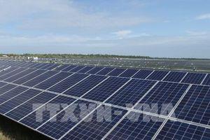 Đức tiên phong xây dựng 'nền kinh tế xanh'