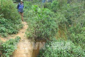 Điện Biên: Rãnh nứt kéo dài hàng trăm mét ở Mường Tỉnh A ngày càng rộng