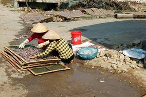 Thị xã Hoàng Mai (Nghệ An): Nhức nhối ô nhiễm tại cảng cá Quỳnh Lập