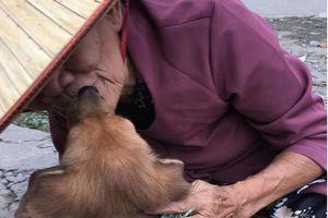 Rơi nước mắt với hình ảnh cụ bà hôn tạm biệt chú cún trước khi bán