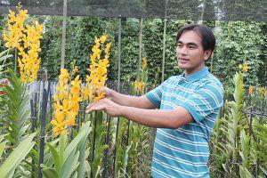 Bỏ phố, làm thuê để học trồng hoa lan