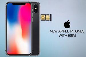 Công ty này đã thu về 71 triệu USD nhờ cung cấp dịch vụ eSIM trên iPhone Xs, XR của Apple