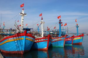 Tàu cá của ngư dân Quảng Nam bị tàu lạ tấn công