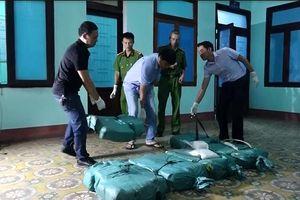 Quảng Bình: Truy bắt nghi phạm vận chuyển 310kg ma túy đá trên xe bán tải