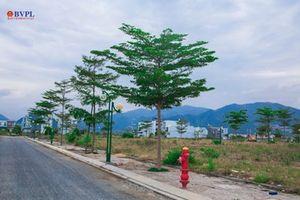 Phê chuẩn quyết định khởi tố bị can đối với nguyên Chủ tịch UBND phường Phước Long