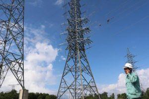 TP.HCM: Thu hồi 32 trụ điện không sử dụng để an toàn cho dân