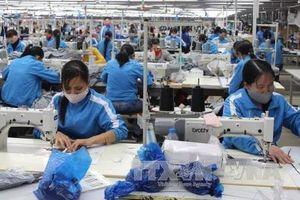 Động lực thúc đẩy quan hệ kinh tế giữa Việt Nam với các nước EU