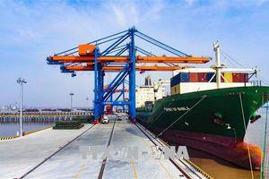 Công bố mở cảng cạn Quảng Bình - Đình Vũ