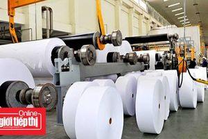 Việt Nam nhập khẩu gần 2 triệu tấn giấy mỗi năm